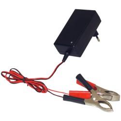 Chargeur de batterie de moto motoculteur PARKMATIC 1-12