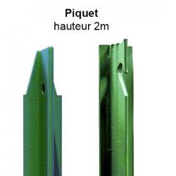 Piquet en T 2m vert