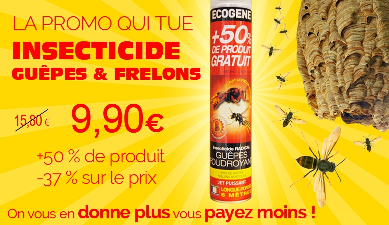 Insecticide frelons asiatiques guêpes et frelons promotion